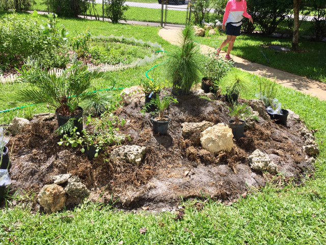 Pine Rockland Planting and Community Garden Celebration at the Miami ...